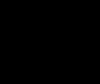 Shade and Hue Flora Logo